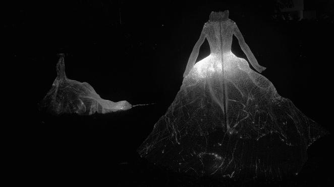 Fibre optic dress