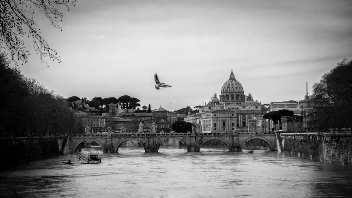 Vatican+bird+BW
